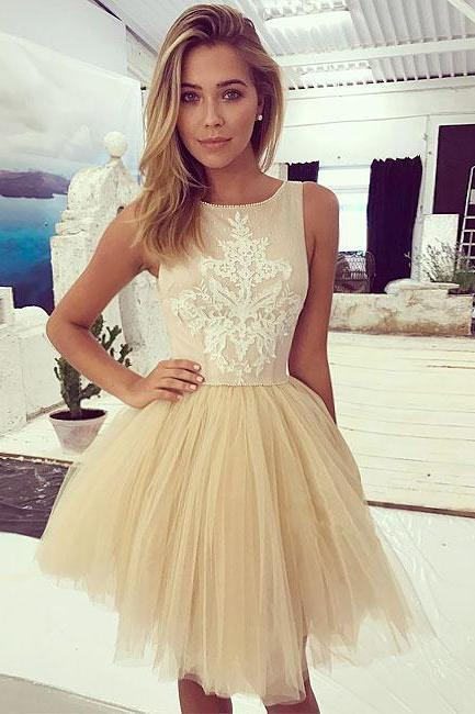 Champagne Lace Tulle Short Prom Dress, Champagne Homecoming Dress,G1619